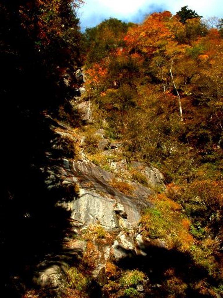 2002-tosaka-17.jpg